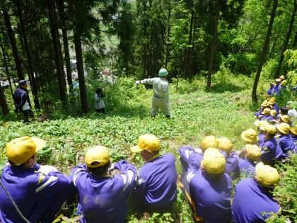 森と人の関わりを学ぶ